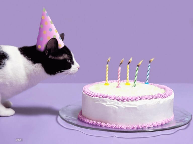 Happy Birthday Pat home Party