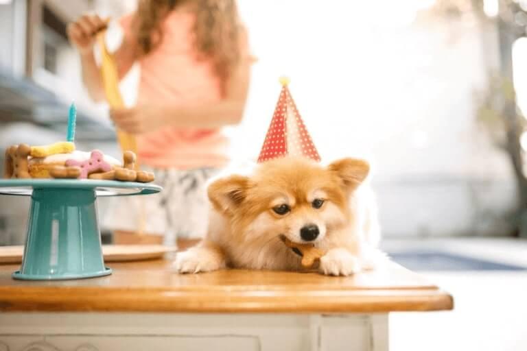 Happy Birthday Pat Cake Images
