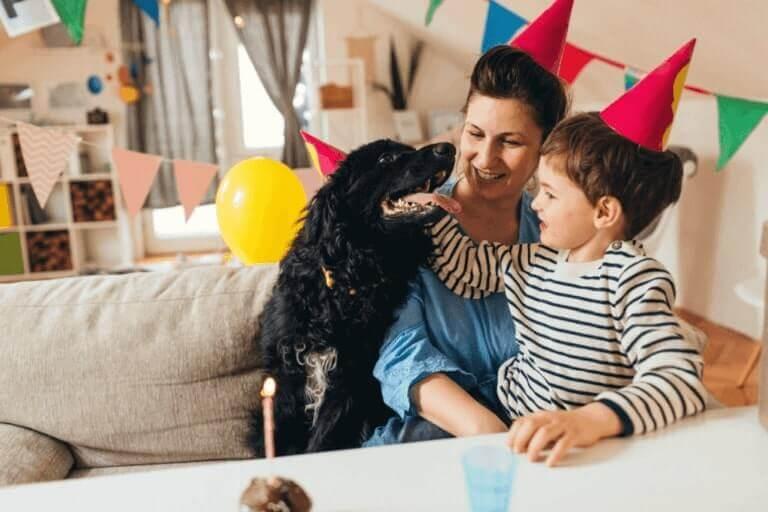 Happy Birthday pat Dog