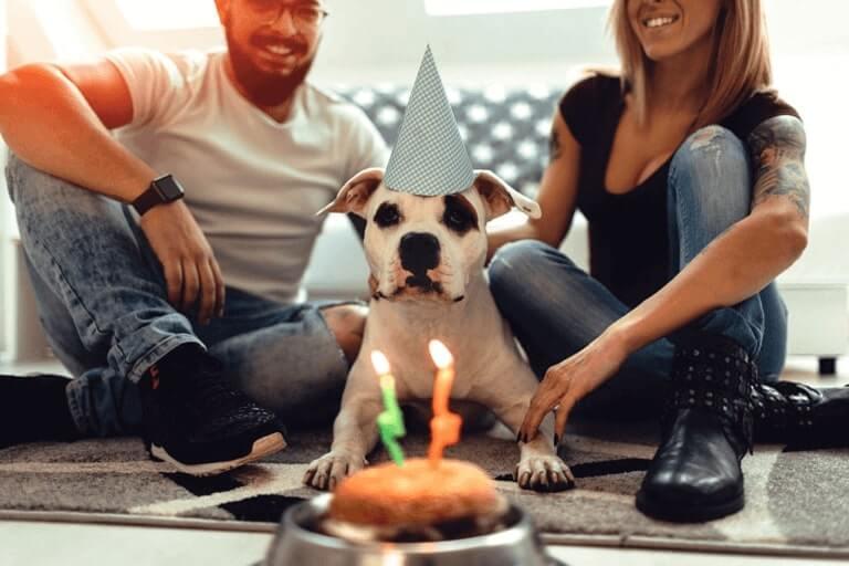 Happy Birthday pat Party