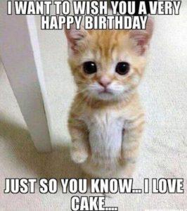 Happy Birthday Meme