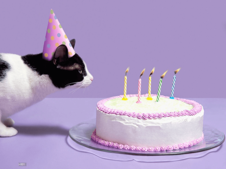 Happy Birthday Pat Images