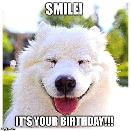 Happy birthday dog funny meme images